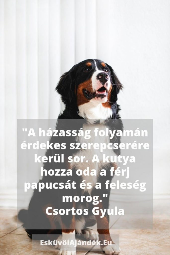 vicces-eskuvoi- ajandek- szoveg7
